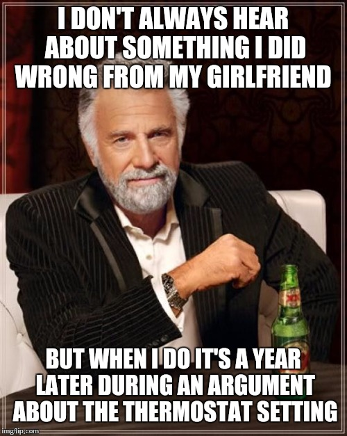 The Most Interesting Man In The World Meme | I DON'T ALWAYS HEAR ABOUT SOMETHING I DID WRONG FROM MY GIRLFRIEND BUT WHEN I DO IT'S A YEAR LATER DURING AN ARGUMENT ABOUT THE THERMOSTAT S | image tagged in memes,the most interesting man in the world | made w/ Imgflip meme maker