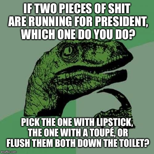 Philosoraptor Meme | IF TWO PIECES OF SHIT ARE RUNNING FOR PRESIDENT, WHICH ONE DO YOU DO? PICK THE ONE WITH LIPSTICK, THE ONE WITH A TOUPÉ, OR FLUSH THEM BOTH D | image tagged in memes,philosoraptor | made w/ Imgflip meme maker