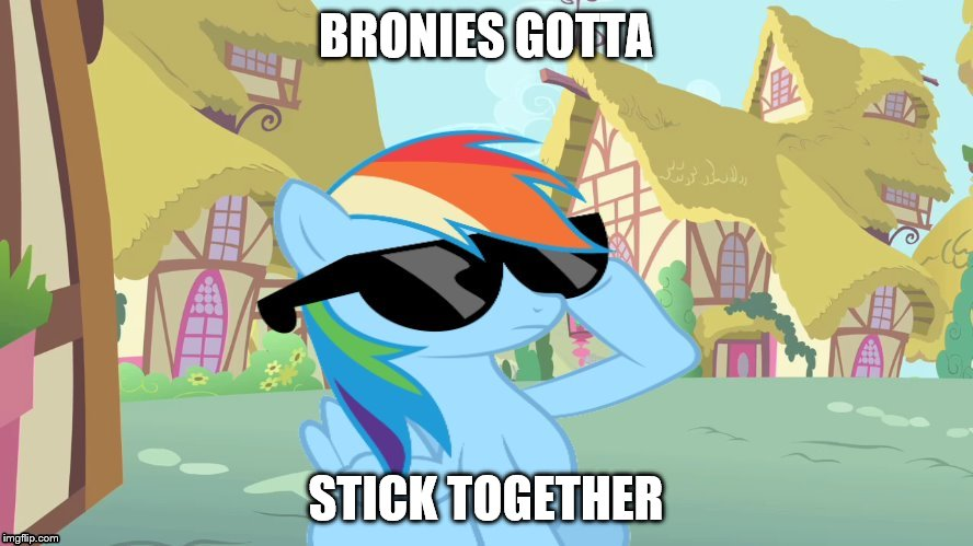 Rainbow Dash Shades | BRONIES GOTTA STICK TOGETHER | image tagged in rainbow dash shades | made w/ Imgflip meme maker