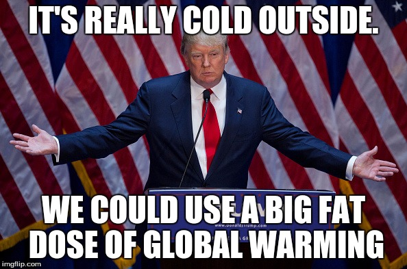 Donald Trump | IT'S REALLY COLD OUTSIDE. WE COULD USE A BIG FAT DOSE OF GLOBAL WARMING | image tagged in donald trump | made w/ Imgflip meme maker