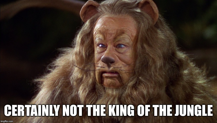 CERTAINLY NOT THE KING OF THE JUNGLE | made w/ Imgflip meme maker
