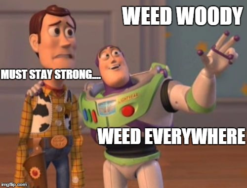 X, X Everywhere Meme | WEED WOODY WEED EVERYWHERE MUST STAY STRONG.... | image tagged in memes,x x everywhere | made w/ Imgflip meme maker