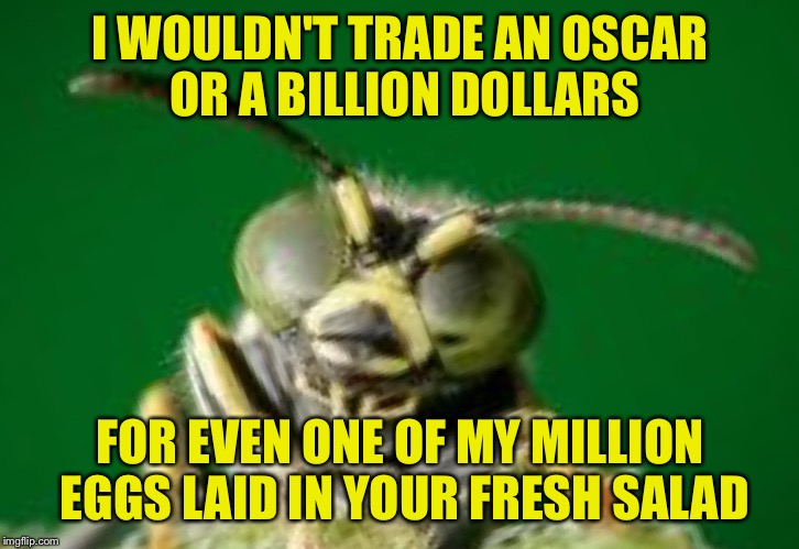 MR GREEN BUG | I WOULDN'T TRADE AN OSCAR OR A BILLION DOLLARS FOR EVEN ONE OF MY MILLION EGGS LAID IN YOUR FRESH SALAD | image tagged in mr green bug | made w/ Imgflip meme maker