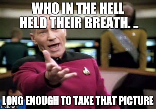 Picard Wtf Meme | WHO IN THE HELL HELD THEIR BREATH. .. LONG ENOUGH TO TAKE THAT PICTURE | image tagged in memes,picard wtf | made w/ Imgflip meme maker