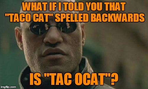 "Matrix Morpheus Meme | WHAT IF I TOLD YOU THAT ""TACO CAT"" SPELLED BACKWARDS IS ""TAC OCAT""? 