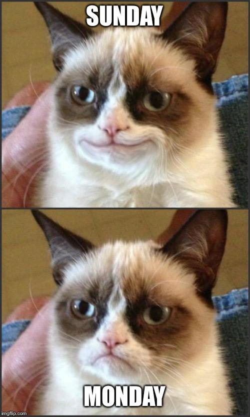 Happy Grumpy Cat Photoshop Imgflip