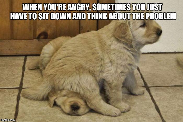 10hfyq upvote this if you love puppies imgflip