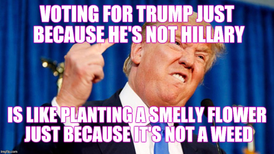 Trump - Bird | VOTING FOR TRUMP JUST BECAUSE HE'S NOT HILLARY IS LIKE PLANTING A SMELLY FLOWER JUST BECAUSE IT'S NOT A WEED | image tagged in trump - bird | made w/ Imgflip meme maker