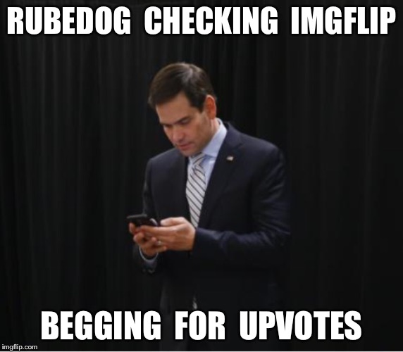 Why is my 'Trump is Hitler' meme not featured? | RUBEDOG  CHECKING  IMGFLIP BEGGING  FOR  UPVOTES | image tagged in trump 2016,marco rubio | made w/ Imgflip meme maker