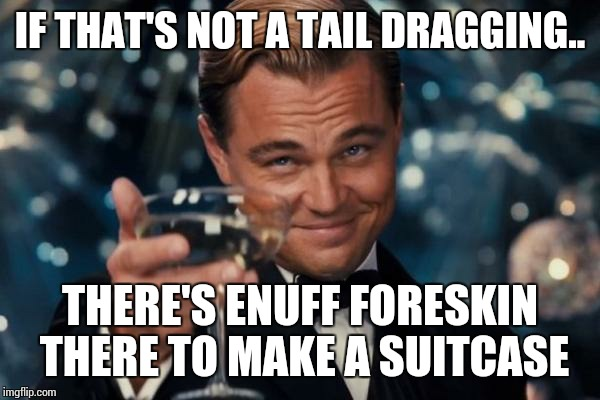 Leonardo Dicaprio Cheers Meme | IF THAT'S NOT A TAIL DRAGGING.. THERE'S ENUFF FORESKIN THERE TO MAKE A SUITCASE | image tagged in memes,leonardo dicaprio cheers | made w/ Imgflip meme maker