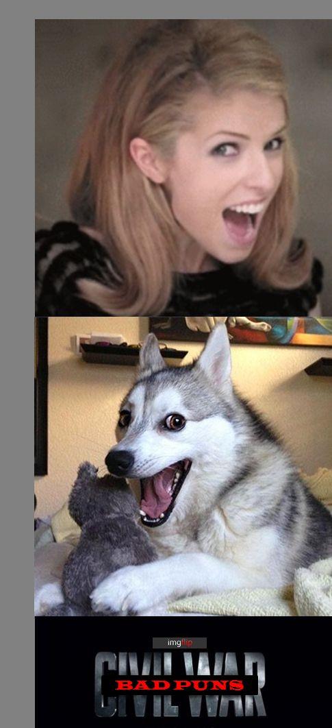 Anna Kendrick Dog Meme