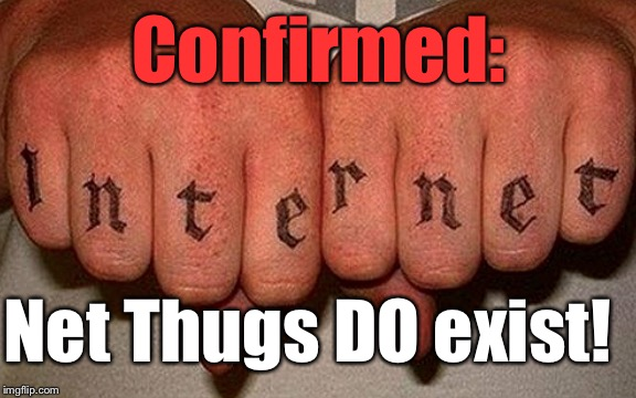 And I Thought That Was Just Somebody Calling Me Out... | Confirmed: Net Thugs DO exist! | image tagged in internet thug,memes,lmao,thug life,gangsta | made w/ Imgflip meme maker