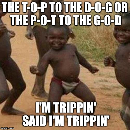 Third World Success Kid Rock | THE T-O-P TO THE D-O-G OR THE P-O-T TO THE G-O-D I'M TRIPPIN' SAID I'M TRIPPIN' | image tagged in memes,third world success kid,kid rock,bull,god | made w/ Imgflip meme maker
