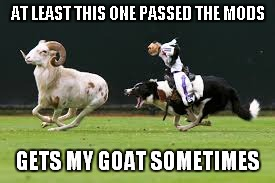 AT LEAST THIS ONE PASSED THE MODS GETS MY GOAT SOMETIMES | made w/ Imgflip meme maker