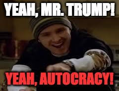 Breaking Bad | YEAH, MR. TRUMP! YEAH, AUTOCRACY! | image tagged in breaking bad,american politics,donald trump | made w/ Imgflip meme maker