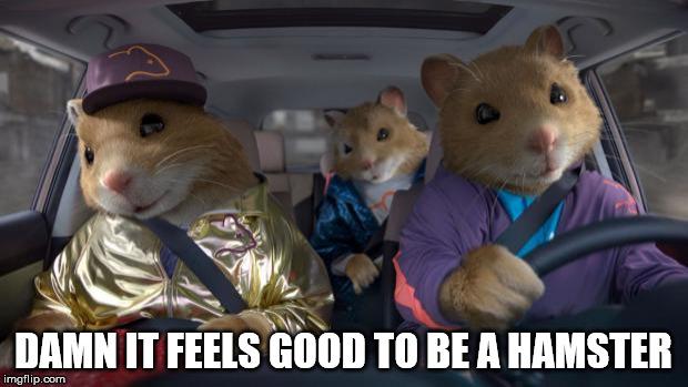 10iz3s cool kia hamsters memes imgflip