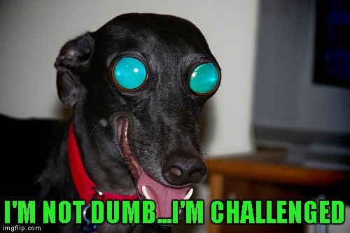 I'M NOT DUMB...I'M CHALLENGED | made w/ Imgflip meme maker