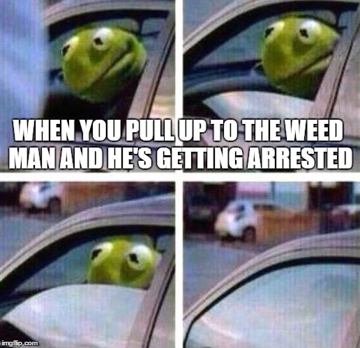 Resultado de imagen para kermit weed
