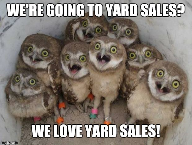 Funny Yard Sale Meme : Excited owls imgflip