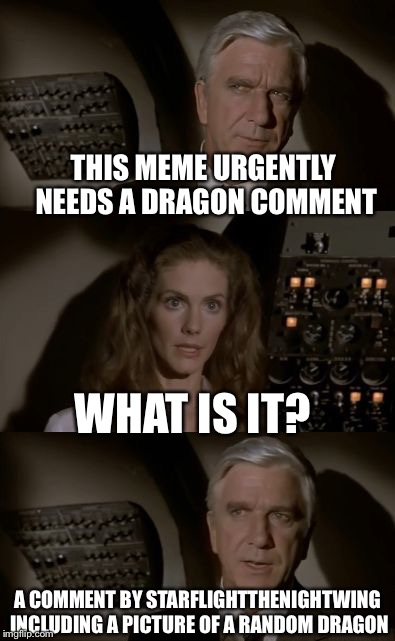 Airplane What Is It? | THIS MEME URGENTLY NEEDS A DRAGON COMMENT WHAT IS IT? A COMMENT BY STARFLIGHTTHENIGHTWING INCLUDING A PICTURE OF A RANDOM DRAGON | image tagged in airplane what is it | made w/ Imgflip meme maker