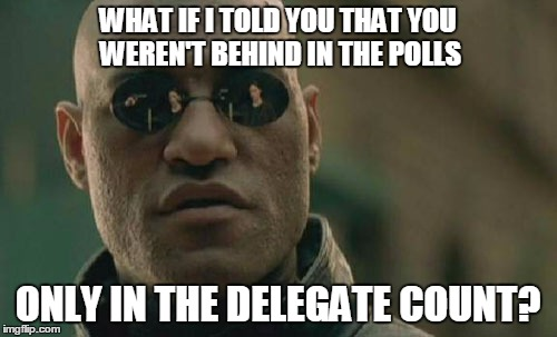 Matrix Morpheus Meme | WHAT IF I TOLD YOU THAT YOU WEREN'T BEHIND IN THE POLLS ONLY IN THE DELEGATE COUNT? | image tagged in memes,matrix morpheus | made w/ Imgflip meme maker