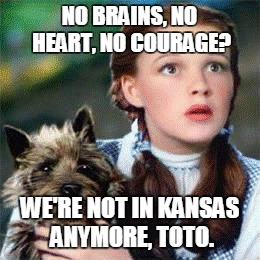 NO BRAINS, NO HEART, NO COURAGE? WE'RE NOT IN KANSAS ANYMORE, TOTO. | image tagged in toto,kansas,wizard of oz,dorothy | made w/ Imgflip meme maker