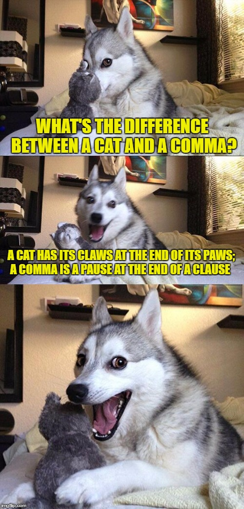 Bad Pun Dog Meme | WHAT'S THE DIFFERENCE BETWEEN A CAT AND A COMMA? A CAT HAS ITS CLAWS AT THE END OF ITS PAWS; A COMMA IS A PAUSE AT THE END OF A CLAUSE | image tagged in memes,bad pun dog | made w/ Imgflip meme maker