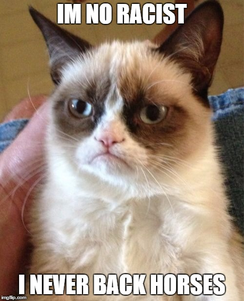 Grumpy Cat Meme | IM NO RACIST I NEVER BACK HORSES | image tagged in memes,grumpy cat | made w/ Imgflip meme maker