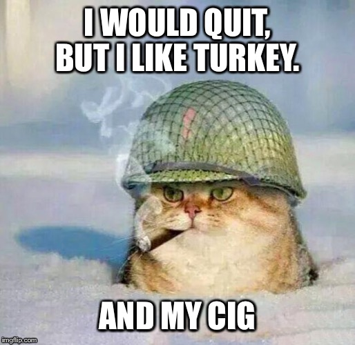 I WOULD QUIT, BUT I LIKE TURKEY. AND MY CIG | made w/ Imgflip meme maker
