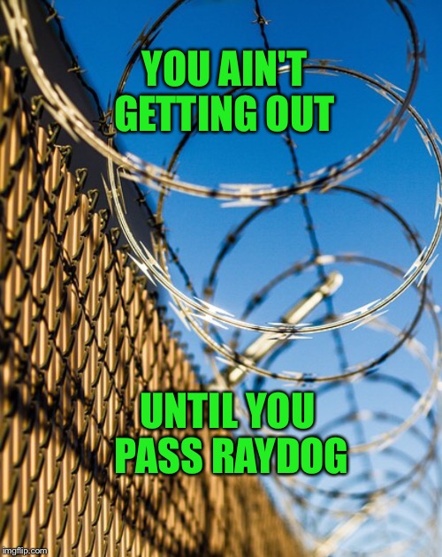 PRETTY FENCE CONCERTINA | YOU AIN'T GETTING OUT UNTIL YOU PASS RAYDOG | image tagged in pretty fence concertina | made w/ Imgflip meme maker