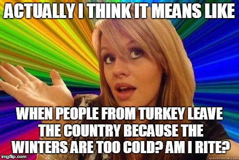 ACTUALLY I THINK IT MEANS LIKE WHEN PEOPLE FROM TURKEY LEAVE THE COUNTRY BECAUSE THE WINTERS ARE TOO COLD? AM I RITE? | made w/ Imgflip meme maker