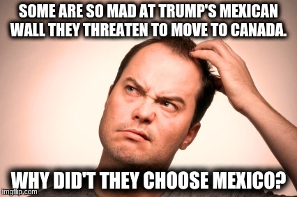 SOME ARE SO MAD AT TRUMP'S MEXICAN WALL THEY THREATEN TO MOVE TO CANADA. WHY DID'T THEY CHOOSE MEXICO? | image tagged in trump,wall,canada | made w/ Imgflip meme maker
