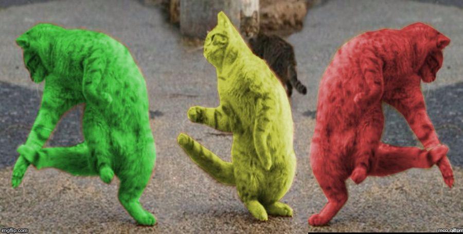 Three Dancing RayCats | . | image tagged in three dancing raycats | made w/ Imgflip meme maker