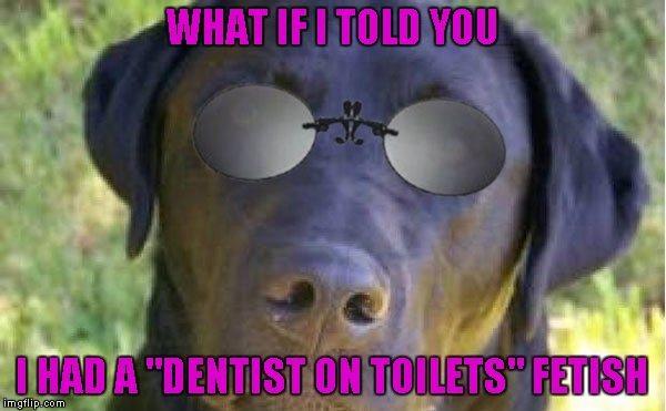 "WHAT IF I TOLD YOU I HAD A ""DENTIST ON TOILETS"" FETISH 