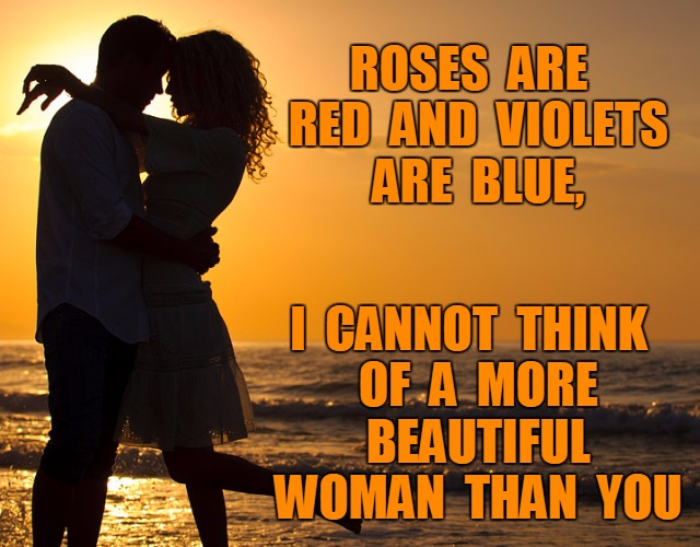 Beautiful Woman | ROSES  ARE  RED  AND  VIOLETS  ARE  BLUE, I  CANNOT  THINK  OF  A  MORE  BEAUTIFUL  WOMAN  THAN  YOU | image tagged in romance | made w/ Imgflip meme maker