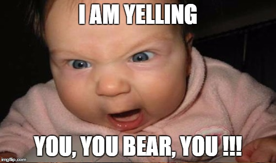 I AM YELLING YOU, YOU BEAR, YOU !!! | made w/ Imgflip meme maker