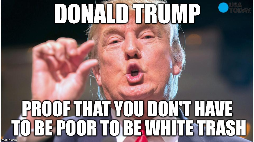 DONALD TRUMP; PROOF THAT YOU DON'T HAVE TO BE POOR TO BE WHITE TRASH | image tagged in trump 2016,donald trump,trump,fuck donald trump,trump sucks | made w/ Imgflip meme maker