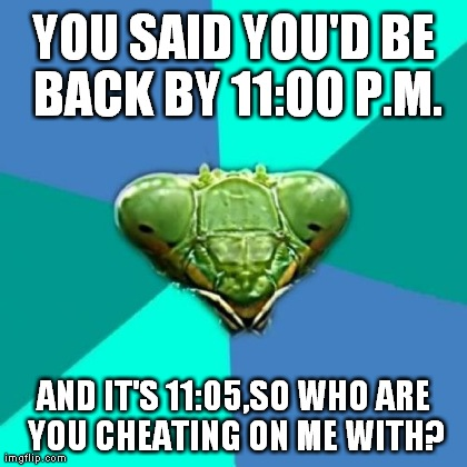 Crazy Girlfriend Praying Mantis Meme | YOU SAID YOU'D BE BACK BY 11:00 P.M. AND IT'S 11:05,SO WHO ARE YOU CHEATING ON ME WITH? | image tagged in memes,crazy girlfriend praying mantis | made w/ Imgflip meme maker