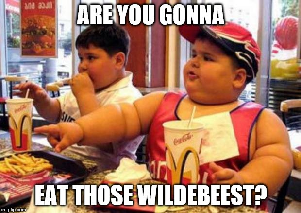 ARE YOU GONNA EAT THOSE WILDEBEEST? | made w/ Imgflip meme maker