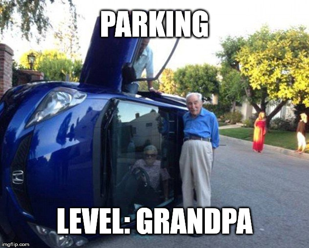 nice pants | PARKING LEVEL: GRANDPA | image tagged in granny flip | made w/ Imgflip meme maker