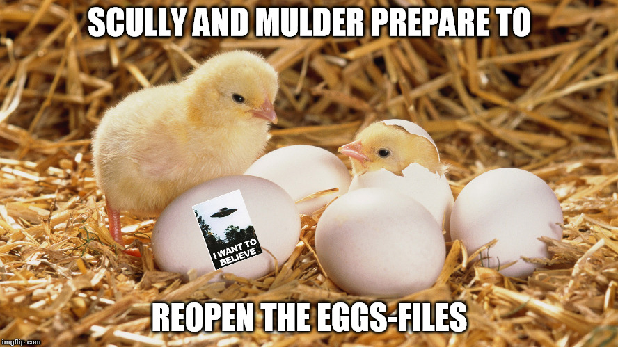 The Eggs-Files |  SCULLY AND MULDER PREPARE TO; REOPEN THE EGGS-FILES | image tagged in x-files,scully,mulder | made w/ Imgflip meme maker