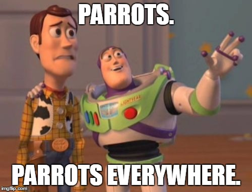 X, X Everywhere Meme |  PARROTS. PARROTS EVERYWHERE. | image tagged in memes,x x everywhere | made w/ Imgflip meme maker