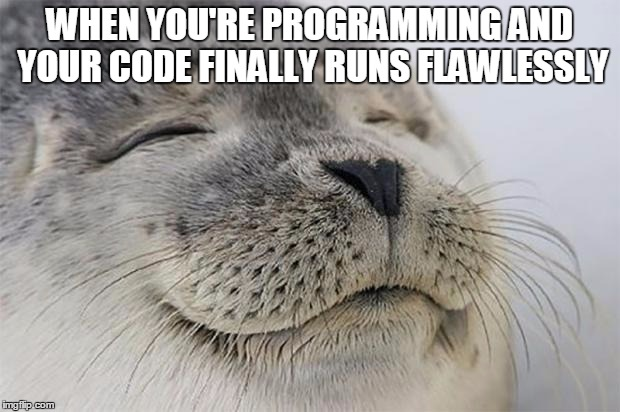 Programmers know the feel! | WHEN YOU'RE PROGRAMMING AND YOUR CODE FINALLY RUNS FLAWLESSLY | image tagged in memes,funny,programming,feels | made w/ Imgflip meme maker