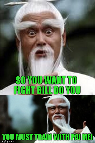 SO YOU WANT TO FIGHT BILL DO YOU YOU MUST TRAIN WITH PAI MEI | made w/ Imgflip meme maker