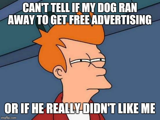Futurama Fry Meme | CAN'T TELL IF MY DOG RAN AWAY TO GET FREE ADVERTISING OR IF HE REALLY DIDN'T LIKE ME | image tagged in memes,futurama fry | made w/ Imgflip meme maker