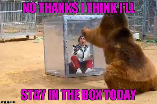 NO THANKS I THINK I'LL STAY IN THE BOX TODAY | made w/ Imgflip meme maker