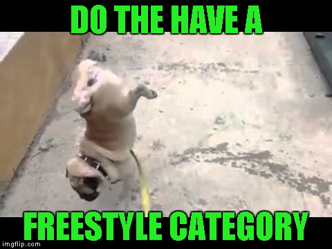 DO THE HAVE A FREESTYLE CATEGORY | made w/ Imgflip meme maker