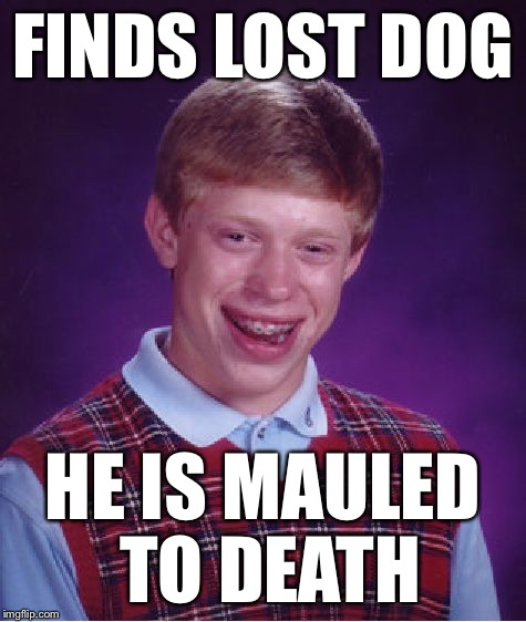 Bad Luck Brian Meme | FINDS LOST DOG HE IS MAULED TO DEATH | image tagged in memes,bad luck brian | made w/ Imgflip meme maker