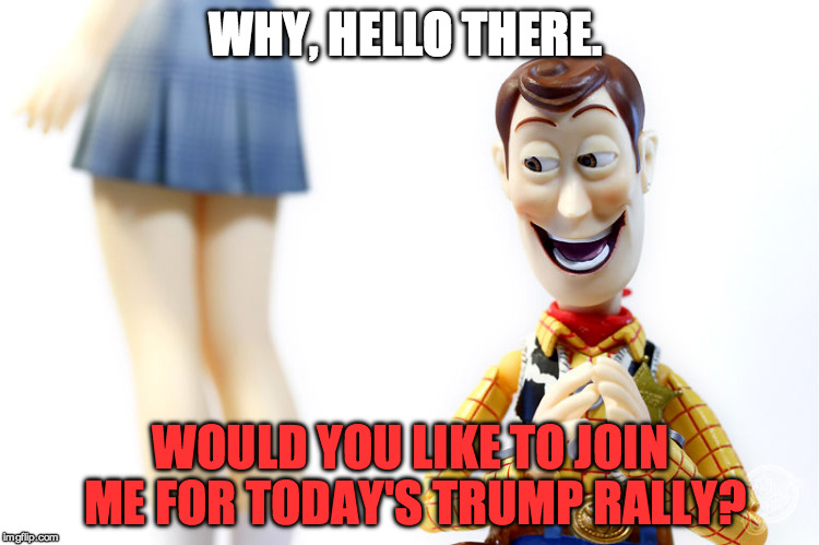 Woody's Bad Pickup Lines #1 | WHY, HELLO THERE. WOULD YOU LIKE TO JOIN ME FOR TODAY'S TRUMP RALLY? | image tagged in hentai woody,pickup lines,woody,trump,funny,stupid | made w/ Imgflip meme maker