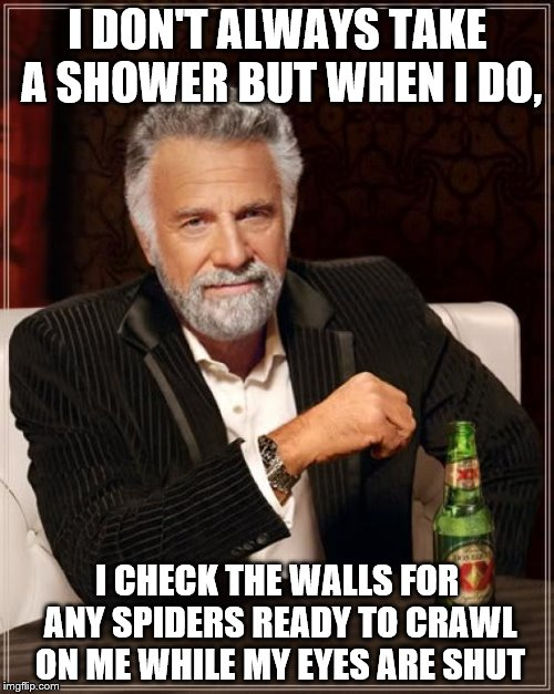 The Most Interesting Man In The World | I DON'T ALWAYS TAKE A SHOWER BUT WHEN I DO, I CHECK THE WALLS FOR ANY SPIDERS READY TO CRAWL ON ME WHILE MY EYES ARE SHUT | image tagged in memes,the most interesting man in the world | made w/ Imgflip meme maker